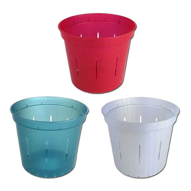 "5"" Slotted Orchid Pot - Sampler Pack 1 Each of Red Ruby, White Pearl, and Blue Sapphire"