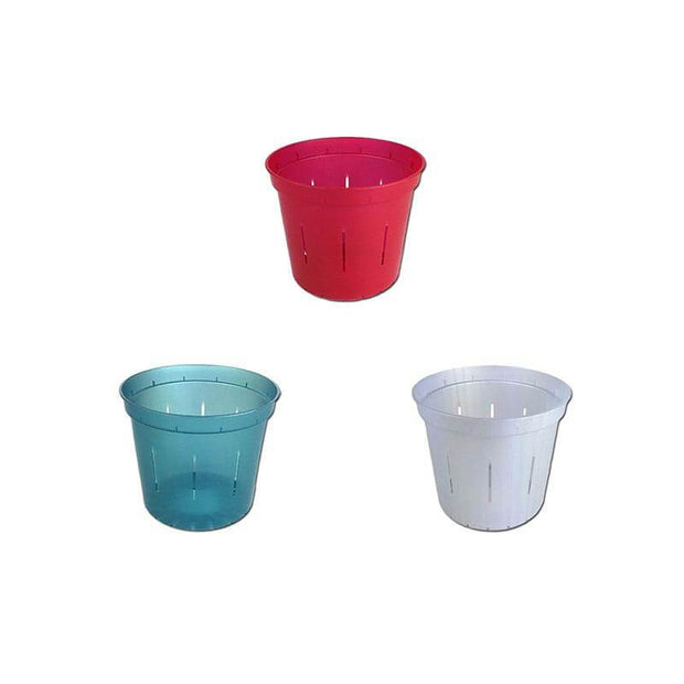 "3"" Slotted Orchid Pot - Sampler Pack 1 Each of Red Ruby, White Pearl, and Blue Sapphire"