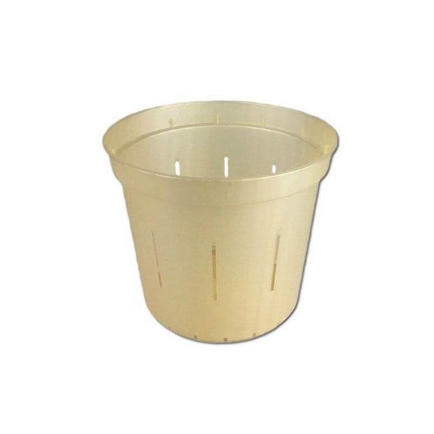 "3"" Golden Creme Slotted Orchid Pot"