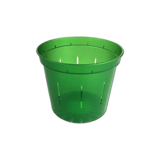 Green Emerald Slotted Violet Pot - 3 Inch - Slot-Pots