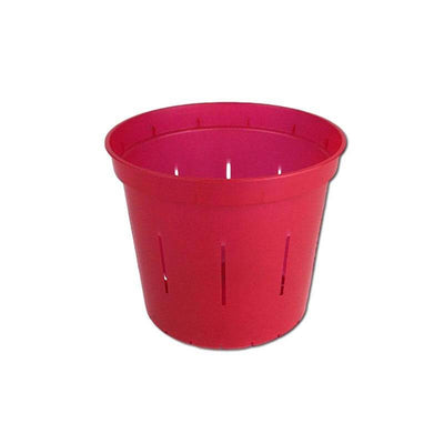 "3"" Ruby Red Slotted Orchid Pot"