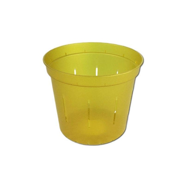 Yellow Topaz Slotted Violet Pot - 3 Inch - Slot-Pots