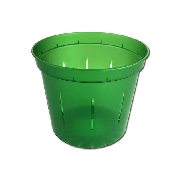 Green Emerald Slotted Violet Pot - 4 Inch - Slot-Pots