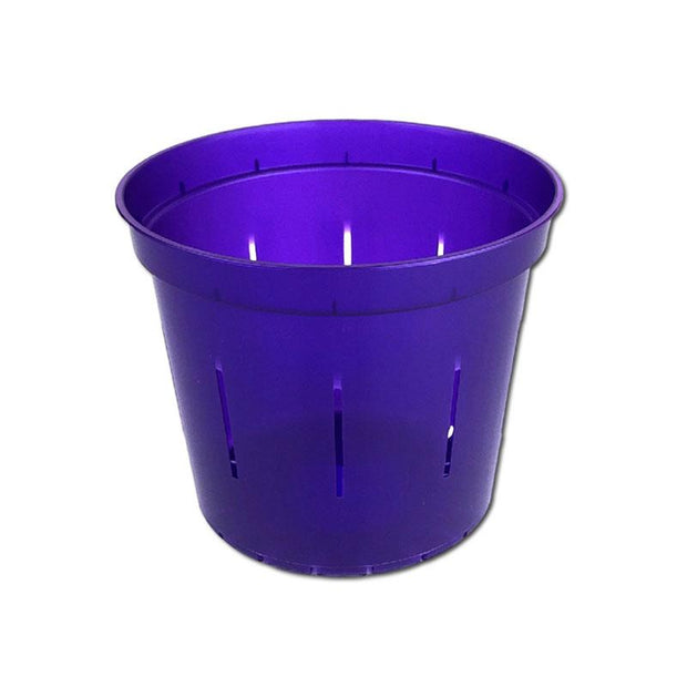 Purple Amethyst Slotted Violet Pot - 4 Inch - Slot-Pots