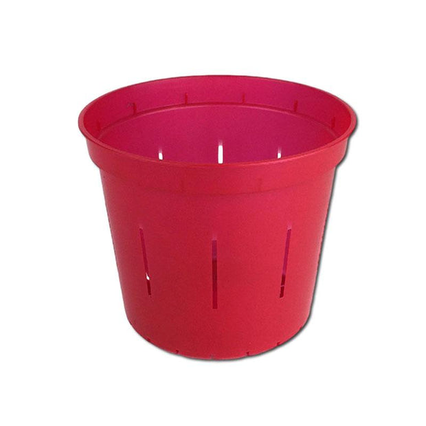 Ruby Red Slotted Violet Pot - 4 Inch - Slot-Pots