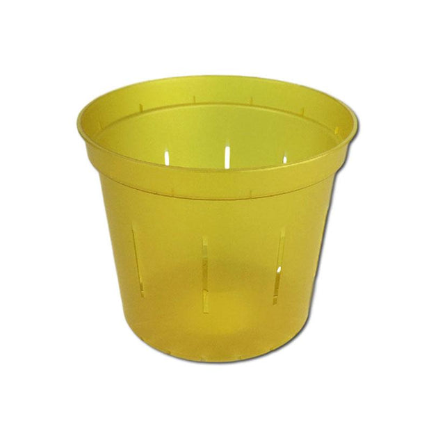 Yellow Topaz Slotted Violet Pot - 4 Inch - Slot-Pots