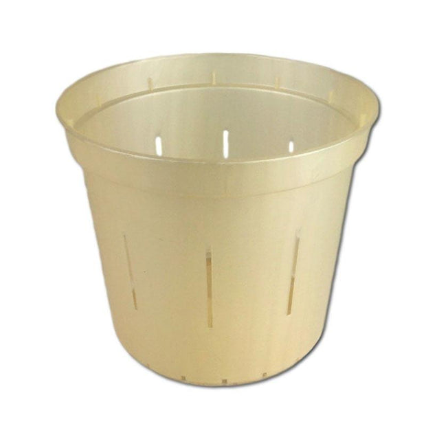 Golden Creme Slotted Violet Pot - 5 Inch - Slot-Pots