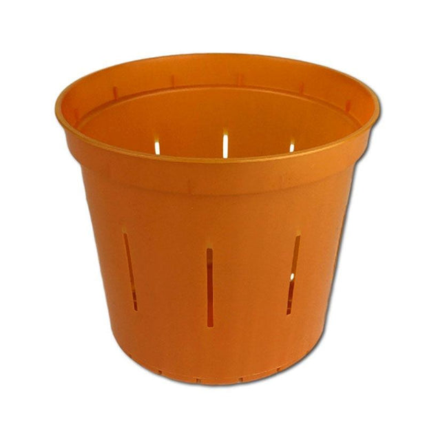 Copper Amber Slotted Violet Pot - 5 Inch - Slot-Pots