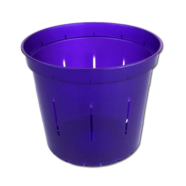 Purple Amethyst Slotted Violet Pot - 5 Inch - Slot-Pots