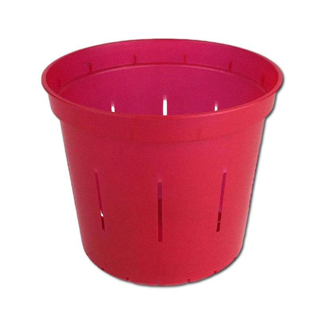"5"" Ruby Red Slotted Orchid Pot"