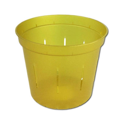Yellow Topaz Slotted Violet Pot - 5 Inch - Slot-Pots