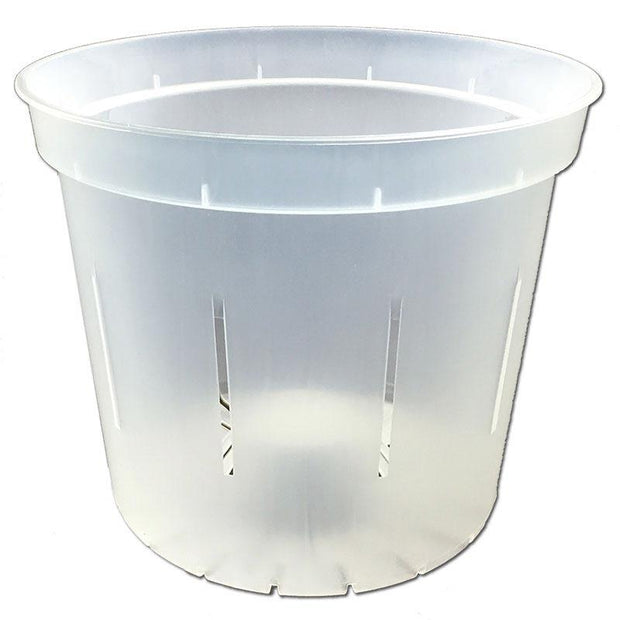 Crystal Clear Slotted Violet Pot - 6 Inch - Slot-Pots