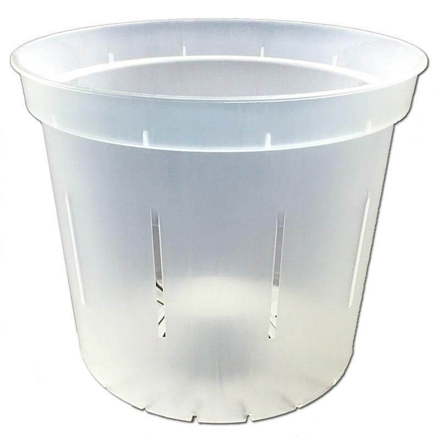 "6"" Slotted Clear Orchid Pot"