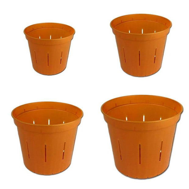Growers Assortment of Copper Amber Slotted Orchid Pots