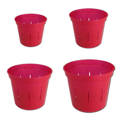 Growers Assortment of Ruby Red Slotted Orchid Pots