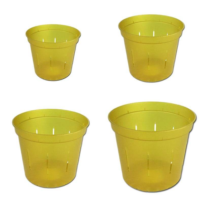 Growers Assortment of Yellow Topaz Slotted Orchid Pots