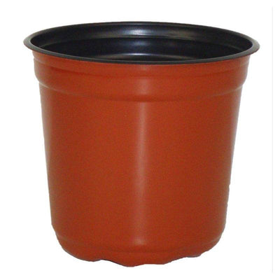 "5"" Taller Gloss Terracotta Flower Pot"