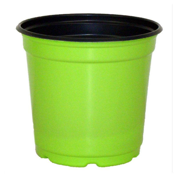"5"" Taller Gloss Tropical Green Flower Pot"