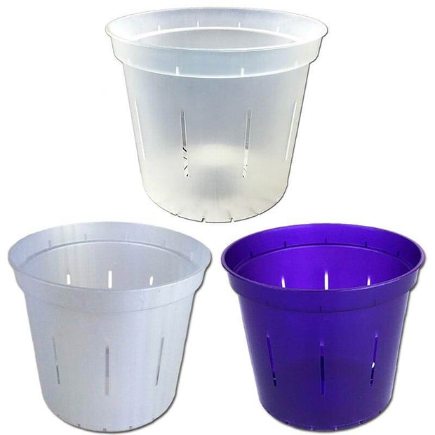 "6"" Slotted Orchid Pot - Sampler Pack 1 Each of White Pearl, Purple Amethyst, and Crystal Clear"