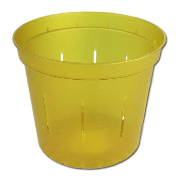 Yellow Topaz Slotted Violet Pot - 6 Inch - Slot-Pots