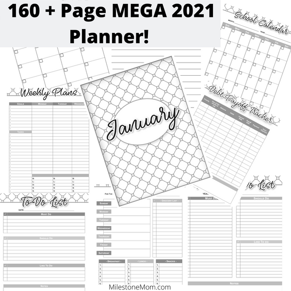 2021 Mega Planner (160 Pages +) Black and White