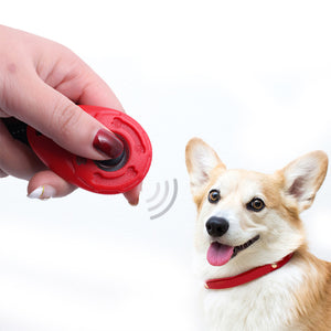 Wrist strap dog training clicker(3 PCs)