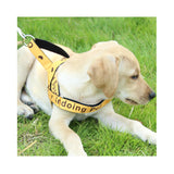 Adjustable Dog Harness Pet Cat Strong Vest Double Layer StrapWith Handle Outdoor