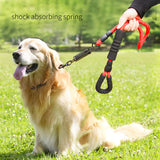 Strong spring lead leash for large dogs breed