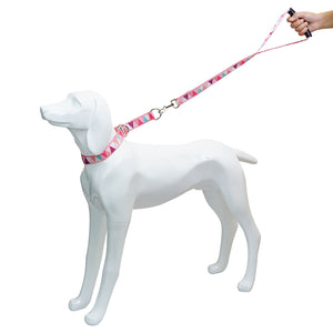 Candy Color Dog Collar Lead Set Pet Collars Short Leash Traffic Leads Handle