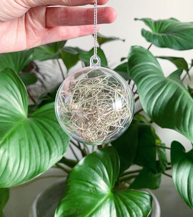 DIY Spanish moss baubles