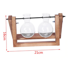 Single & Double Glass Vases on Wooden Stand