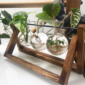 3 Glass Vases on Wooden Stand