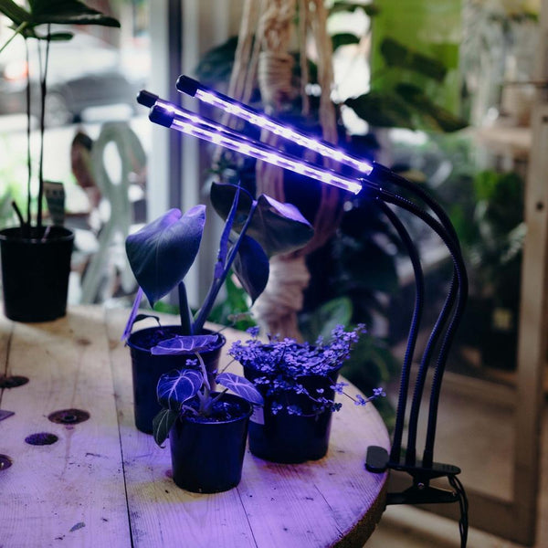 LED Grow Light - Triple