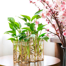 Deluxe Large Vases on Gold Rack