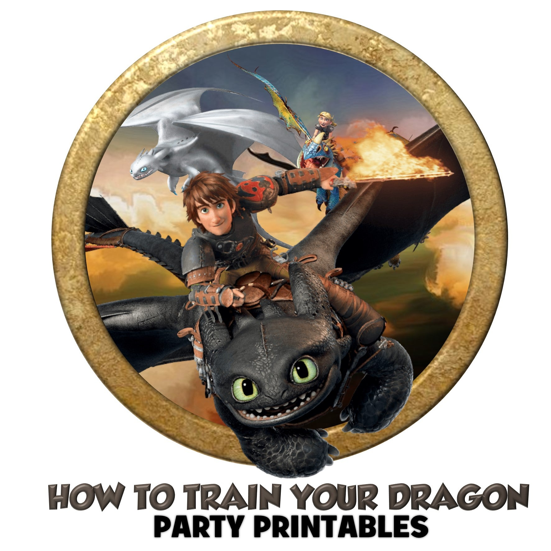 HOW TO TRAIN YOUR DRAGON INSPIRATION