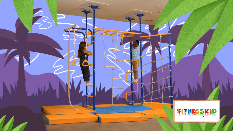 Pegasus Kids Indoor Home Playground/Gym