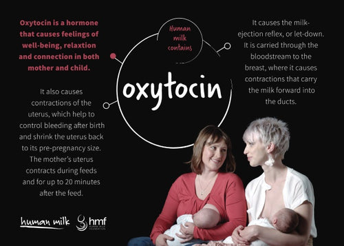 Postcard - Oxytocin (bundle of 25)