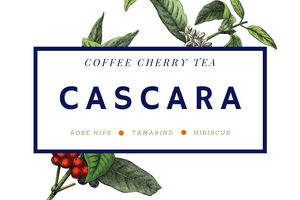Cáscara Tea