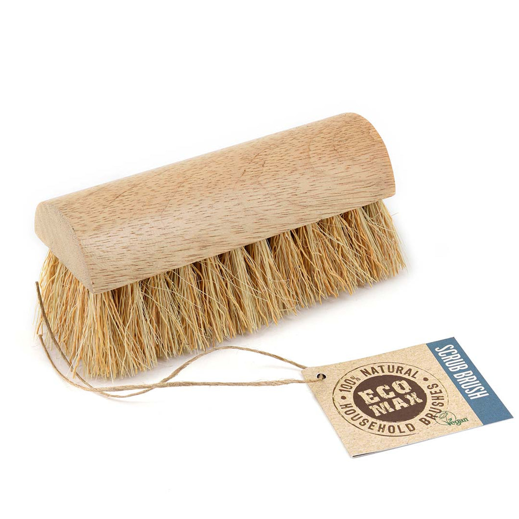Large Eco Scrub Brush