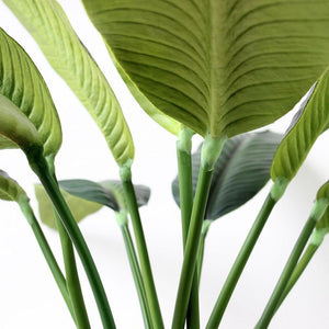 Artificial Bird Of Paradise Leaves, Plant - MySiliconDreams