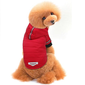Red Parka Winter/Fall Dog Jacket for Large and Small, Dog Accessories - MySiliconDreams
