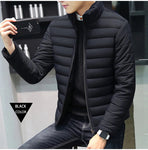 Men's winter parks with cotton lining. 3 Colors