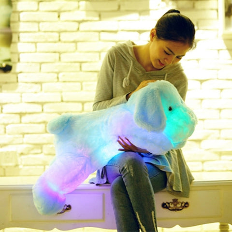 Light Up Teddy Dog LED Bed Buddy
