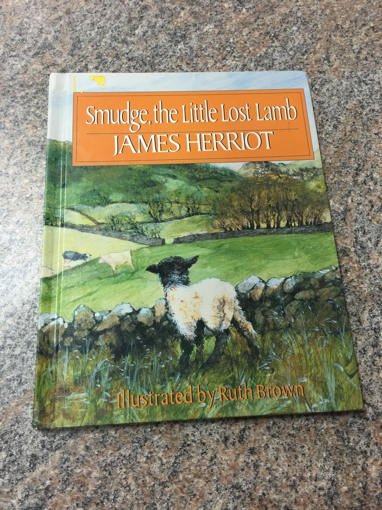 Smudge, the little lost lamb ~ James Herriot