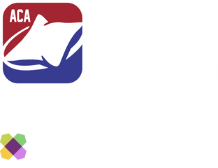 American Cornhole Association