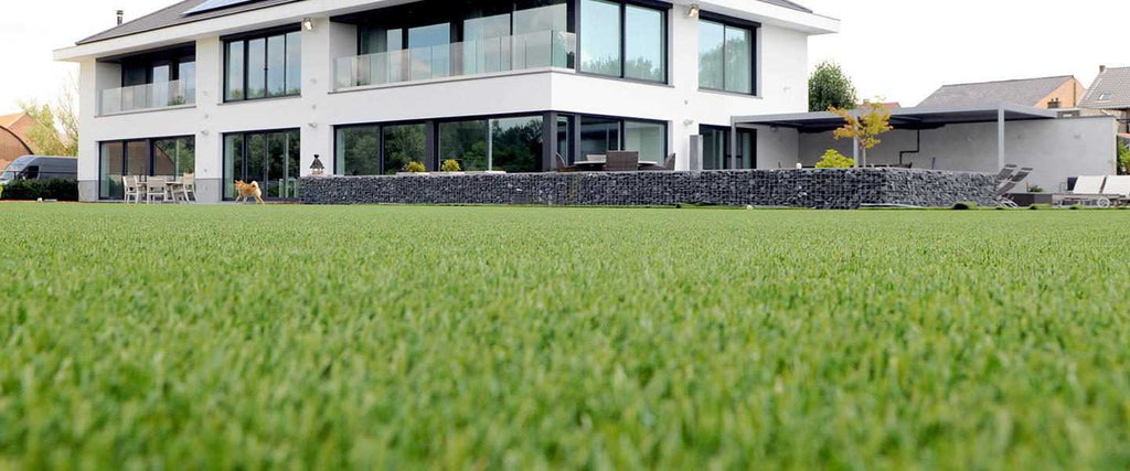 Elise Plymouth Artificial Grass