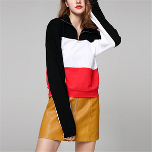 Fashion High Collar Zipper Color Blocking Loose Hoodie