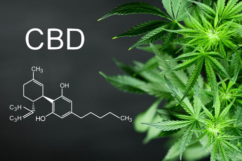 CBD-with-its-chemical-structure-and-hemp-leaves-next-to-it