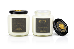 9 oz Soy Candle FRONT AND BACK - Dark Lit Collection
