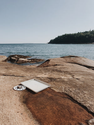 odette on the road cards | otter cliff, acadia national park, maine